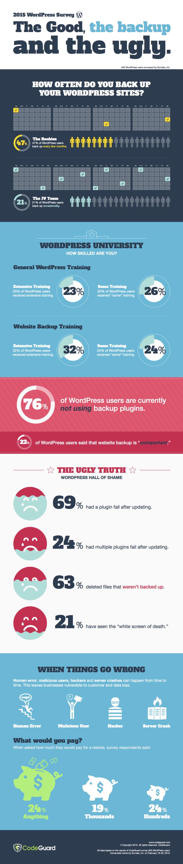 Wordpress Security Infographic