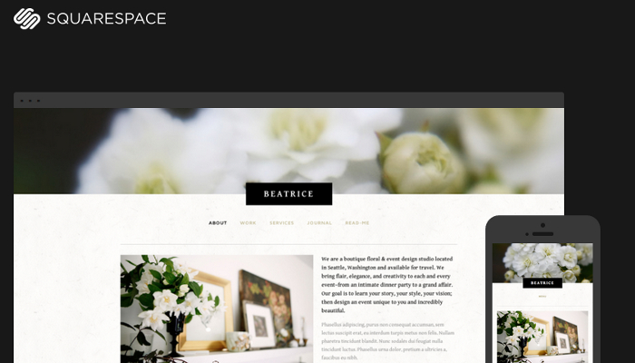 5 good squarespace ecommerce templates af templates for Best squarespace template for video