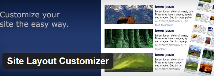 Site Layout Customizer